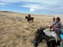Advanced Riding and Loping