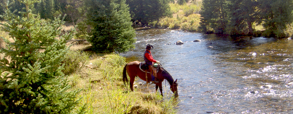 River-CrossingOn-a-Horse-bannerpic