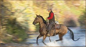 advanced-horse-riding