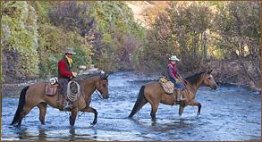novice-horse-rider-hideout