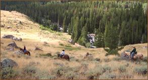 novice-horse-rider-hideout2