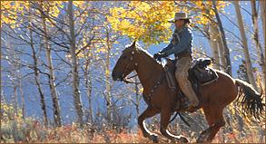 ridingmustangs3