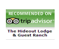 Trip Advisor Testimonials