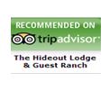 Trip Advisor Testimonials
