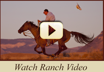 watch_ranch_video