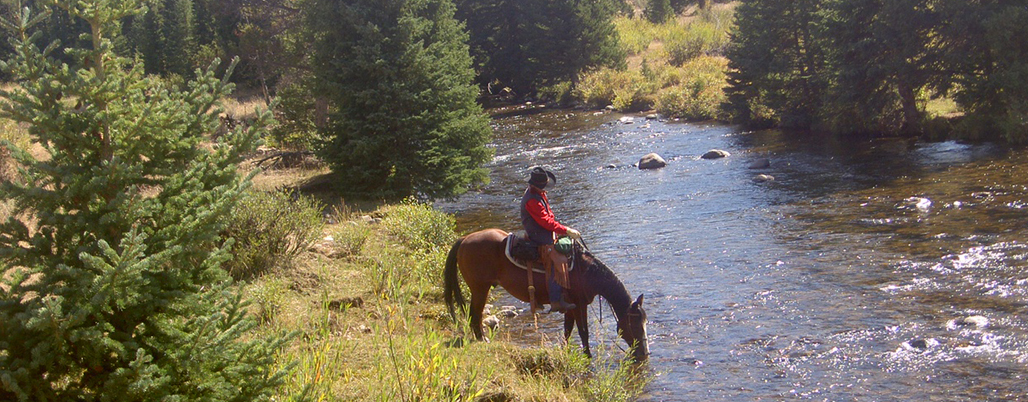 Wyoming Dude Ranches Western Guest Ranch Vacation At The